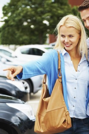 vehicle choices for the renting